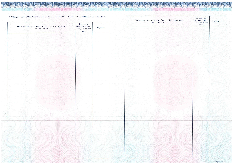 Бланки документов о высшем образовании АлтГТУ Приложение к диплому магистра Метки бланки ВПО диплом
